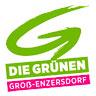 Besuche uns auf Die Grünen Groß Enzersdorf Website